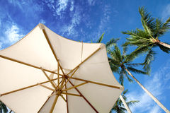 Parasol and palm trees againstblue skies Royalty Free Stock Image
