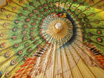 parasol pawi Zdjęcie Royalty Free