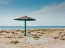 The parasol and two seagulls on empty sandy beach Stock Images