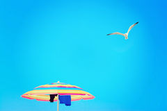 Parasol under a flying seagull Royalty Free Stock Images
