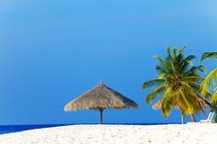 Parasol under palm tree Stock Photos