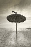 Parasol on winter beach. Parasols on winter beach in dramatic light vintage retro monotone color in Mallorca, Balearic islands, Spain Stock Images