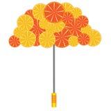 Parasol z pomarańczami i grapefruits Obrazy Royalty Free