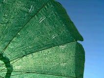 Parasole Fotografie Stock