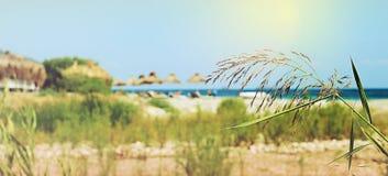 Parasole i bryczka hole na plaży błękitny skał denny seascape nieba lato Obrazy Stock