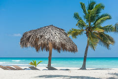 Parasole sull'isola di Saona Immagine Stock