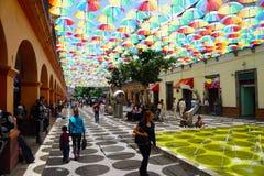 Parasole w konstytucja spacerze Toluca obrazy stock