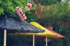 Parasoles de playa multicolores brillantes contra la perspectiva de verdes Imagenes de archivo