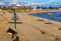 Parasoller är en sandig strand på bakgrund av träd Arkivfoto