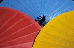Parasols Stock Image