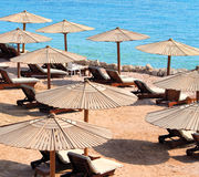 Parasols. And Sun Chairs on the Sand near Sea under Sunlight Royalty Free Stock Photography