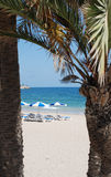 Parasols on the beach royalty free stock photo