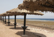Parasols on the beach. In Dahab, Egypt Stock Photo