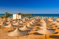 Parasols on the beach of Red Sea. In Hurghada, Egypt Royalty Free Stock Photography