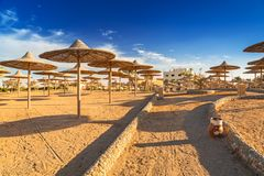 Parasols on the beach of Red Sea. In Hurghada, Egypt Stock Photo