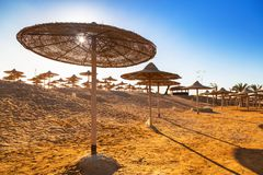 Parasols on the beach of Red Sea. In Hurghada, Egypt Royalty Free Stock Image
