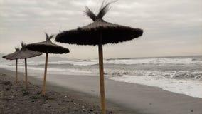 Parasols op het strand Royalty-vrije Stock Foto