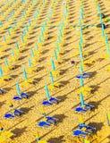 Parasols op overzees strand Stock Fotografie