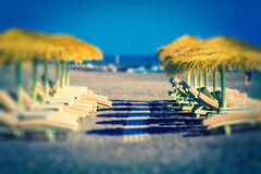 Parasols and sunbeds Stock Images