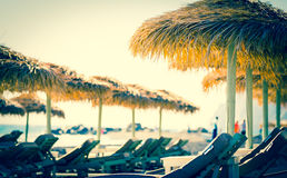 Parasols and sunbeds Stock Photos