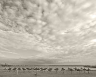 Parasols on winter beach. In vintage retro monotone color in Mallorca, Balearic islands, Spain Royalty Free Stock Image