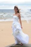 Parata 2010 delle spose Fotografie Stock