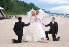 Parata 2010 delle spose Immagini Stock Libere da Diritti