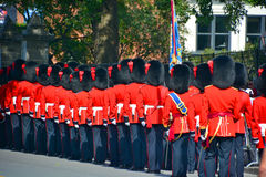 Parata del soldato Fotografie Stock