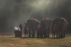 Parata dell'elefante Immagine Stock