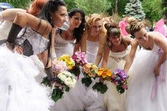 Parata della sposa Immagini Stock Libere da Diritti