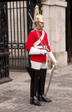 Parata delle protezioni di cavallo della protezione della regina. Londra Regno Unito. Fotografia Stock Libera da Diritti