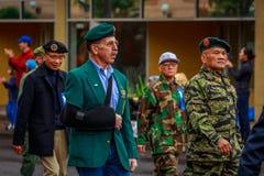 Parata 2017 di giornata dei veterani Fotografia Stock