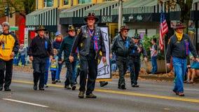 Parata 2016 di giornata dei veterani Immagini Stock