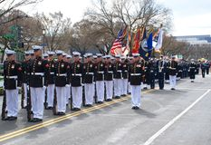 Parata di giorno di Patrickâs del san del Washington DC. immagine stock