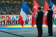 Parata solenne delle bandiere Fotografie Stock Libere da Diritti