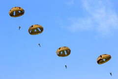 Paratroopers Royalty Free Stock Photo