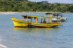 黄色小船在Paraty巴西 免版税图库摄影