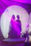 parbröllop Royaltyfria Bilder