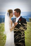 parbröllop royaltyfri bild