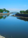 Parc à feuilles persistantes, ville de Haikou, île de Hainan, Chine Images libres de droits