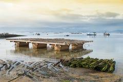 Parc à moules Horizontal marin photos libres de droits