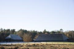 Parc à moutons en hiver Images stock