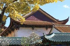 Parc домов публично в Kunming Китае Стоковые Фото