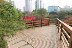 Parc Photo stock