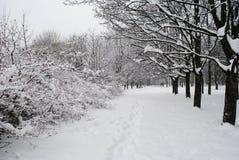 Parc après chutes de neige Photo libre de droits