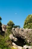 Parc archéologique Images stock