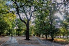 Parc avec des chemins le long d'Odra à Wroclaw photographie stock libre de droits
