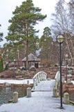 Parc avec le pin couvert de neige à Tallinn Pont au-dessus d'une petite rivière Tallin L'Estonie pendant l'hiver images libres de droits
