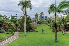 Parc Bermudes de la Reine Image libre de droits