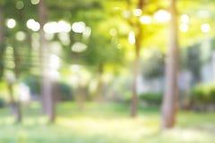 Parc brouillé, fond naturel vert vibrant photo stock